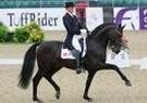 Billund Sports Rideklub 49